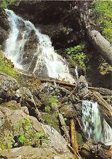 BG10854 naturschutzgebiet gr falkenstein hollbachgespreng lindberg  germany