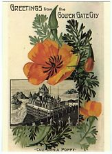 SAN FRANCISCO GOLDEN GATE CITY/CLIFF HOUSE GREETINGS w/POPPIES~NEW 1975 POSTCARD