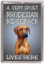 Rhodesian Ridgeback Fridge Magnet  A VERY SPOILT Rhodesian Ridgeback LIVES HERE