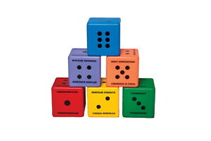 Sportime Five Components of Fitness Dice, Assorted Colors, Set of 6