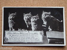 R&L Postcard: Birthday Greetings Cats Kittens
