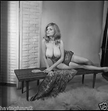 1960s DDD Breasts pinup posing Nude on mid century bench 8 x 8 Photograph