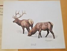 """Guy Coheleach American Elk Signed lithograph print Frame House Gallery18""""x 22"""""""