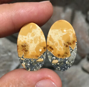 25.7x15x3.5mm Pair Picture Maligano Jasper Oval Cabochons For Earrings
