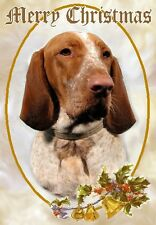 Bracco Italiano Dog A6 Christmas Card Design XBRACCO-1 by paws2print