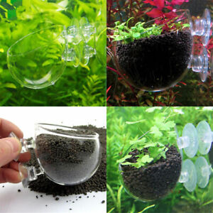 2x Crystal Planter Glass Cup Pot Fish Tank Holder for Aquarium Aquascaping