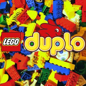 1kg Lego Duplo Bausteine, Sondersteine, Figuren, Tiere, Autos Konvolut