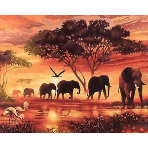 Painting By Numbers Kit DIY Elephant Hand Painted Canvas Oil Art Picture