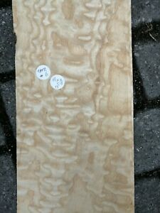 CONSECUTIVE SHEETS OF TAMO ASH VENEER 14-18cm X 116 cm TAS #6  MARQUETRY