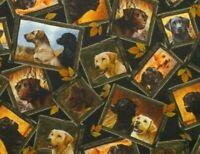 FAT QUARTER FABRIC  LOYAL LABS  LABRADORS  HUNTING DOGS  PUPPY QT 100% COTTON FQ