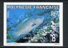 STAMP / TIMBRE POLYNESIE N° 148  **  POISSON /  NON DENTELE