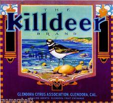 Glendora Los Angeles Killdeer Bird Orange Citrus Fruit Crate Label Art Print