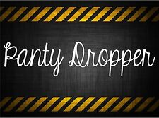 Panty Dropper 22'' decal vinyl car sticker diesel windshield banner jdm honda