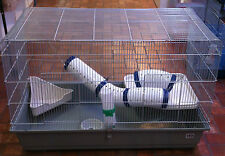 Rat or Ferret Cage 100cm - PICK UP AVAILABLE! CAGE ONLY!!