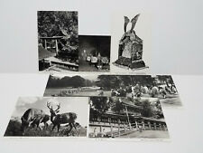Vintage Japanese Postcard Lot K 7 B&W Photo 1960's Travel Ephemera Collectible