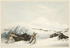 George Catlin's Indian Gallery: Buffalo Hunt in the Snow - Fine Art Print