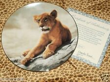 Lion Cub Plate Charles Frace Coa Cub Wild Innocents Collection