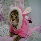 Cute Pet Dog Cat Clothes Coat Apparel Puppy Rabbit Hoodie Fancy Dress Costume Ou
