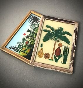 VINTAGE INDIAN REVERSE GLASS PAINTINGS. COCONUT & TROPICAL SUNSET. DECO FRAMES.