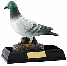 Carrier Pigeon Award - FREE ENGRAVING