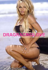 "GORGEOUS Actress/""Bay Watch Babe"" Pam Anderson SEXY PHOTO! #(5)"