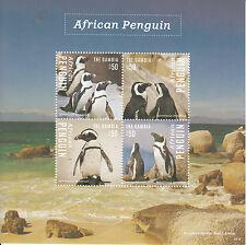 Gambia 2014 MNH African Penguin 4v M/S II Birds Spheniscus Demersus