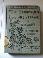 E. Wuitner: VII-les Algues Marines des cotes de Fr .../ Paul Lechevalier, 1921