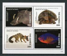 Gambia 2017 MNH Wild Animals of World 4v M/S Civet Barbirusa Fish Turtles Stamps