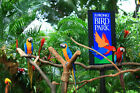 Bird Park cheap ticket with Panorail ride discount Singapore <br/> Bird Park cheap ticket with Panorail ride discount Sing