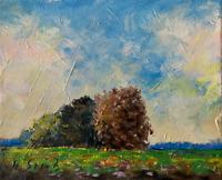 Sunny Meadows Original Painting Impressionist LANDSCAPE