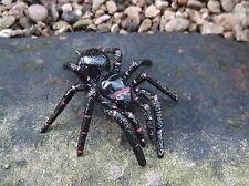 FUNNEL WEB SPIDER model Science and Nature - small plastic replica Australian