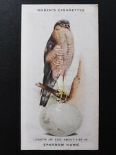 No.39 SPARROW HAWK - British Birds & Their Eggs by Ogdens Ltd 1939