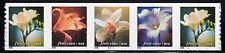 Sc# 3465a (34 Cent) Flowers (2000) MNH PNC/5 P# B1111 SCV $27.50