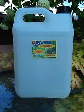 anti-algue filamenteuse entretien traitement eau bassin