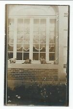 BM974 Carte Photo vintage card RPPC Animaux Chat Cat sur rebord de fenêtre