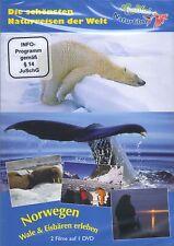 DVD: Norwegen - Wale & Eisbären erleben - einmalig schöne Filmaufnahmen