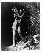 MAUREEN O'SULLIVAN AS JANE – TARZAN – 80s REPRO PHOTO 646 x 26 – NEAR MINT