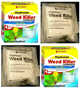 4x PestShield Lawn Weed Killer Concentrate Glyphosate 1x Sachet 32 Sqm Coverage