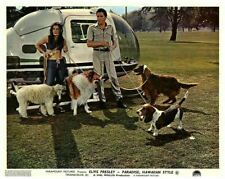 Paradis Hawaïen Style Lobby Carte Elvis Presley Marianne Colline Helicopter Dogs