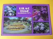 """""""Lilac Time"""", Rochester, New York, USA, Postcard, Posted May 1995, Flowers"""