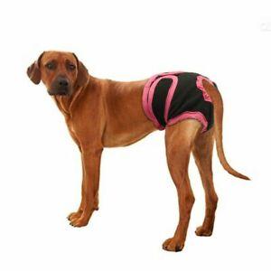 Dog Diaper Adjustable Elastic Band Breathable Soft Menstrual Puppy Hygiene Short
