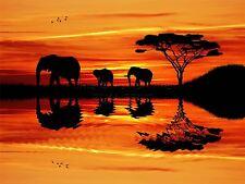 ART PRINT POSTER FOTO ELEFANTE AFRICANO SILHOUETTE SUNSET lfmp0149