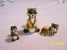 FAMILY OF 3 VINTAGE BONE CHINA  RACCOON / RACOONS   -- MINT & NO RESERVE !!!