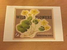 Puffin Book Themed Postcard - Wild Flowers - NEW