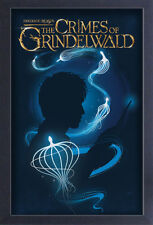 FANTASTIC BEASTS CRIMES OF GRINDELWALD NEWT SILHOUETTE 13x19 FRAME GEL POSTER!!!