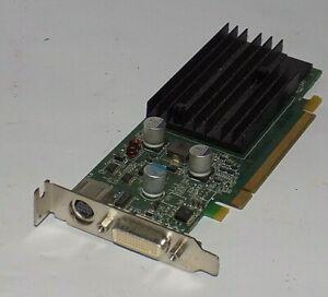 Dell NVIDIA GeForce 9300 GE (N751G) 256MB DDR2 SDRAM PCI Express x16 Graphics ad