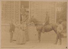 Chevaux de race course hippiqueHaras de Thil 1899 Vintage albumine