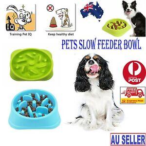 Dog Cat Slow Down Eating Feeder Dish Pet Feeding Food Dish Bowl Dispenser Fun