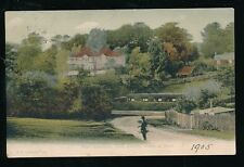 Hants Hampshire NEW FOREST BANK Miss Braddens Home 1905 PPC by F G O Stuart