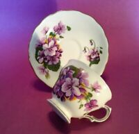 Royal Vale Pedestal Teacup And Saucer - White With Large Violets - England